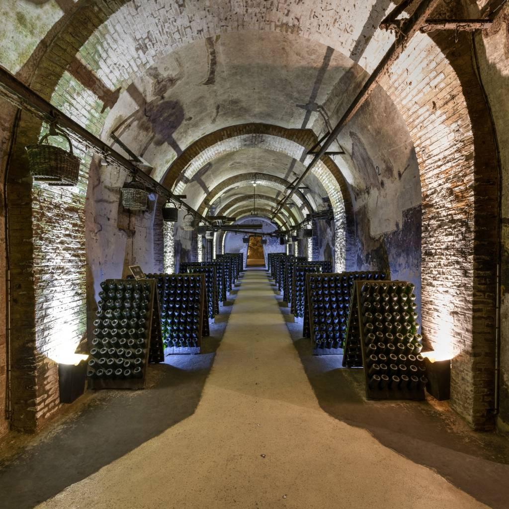 自助游览Pommery酒窖和Villa Demoiselle,并品尝2杯香槟
