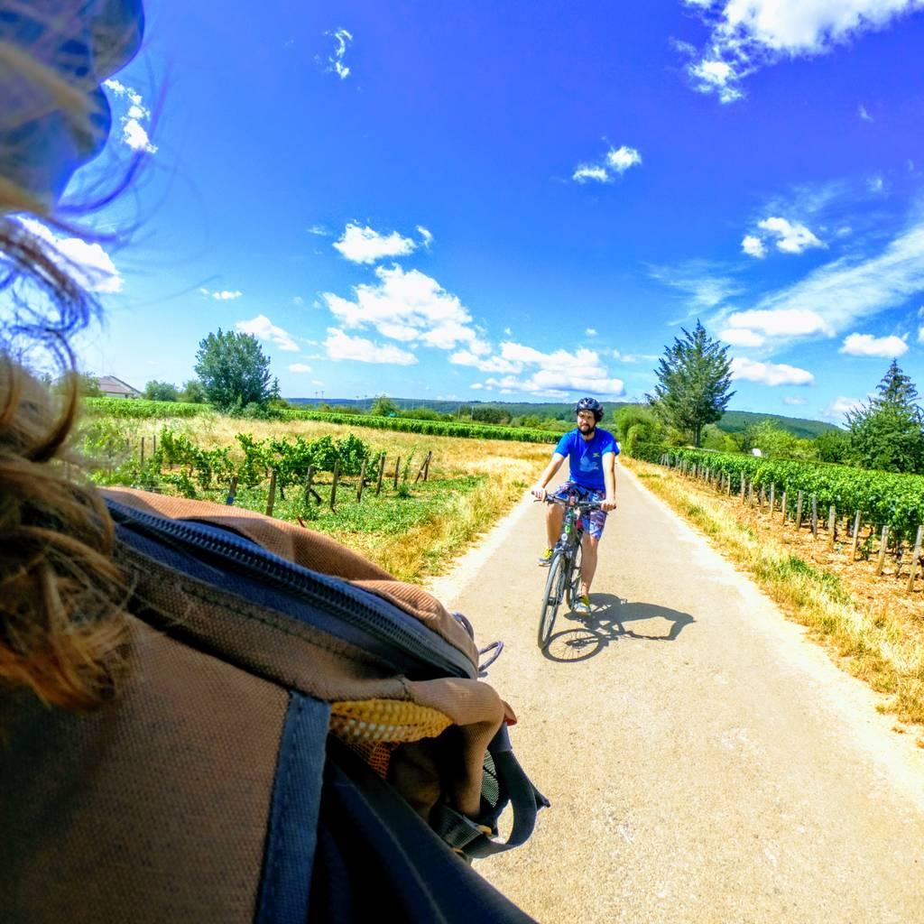 - Descoberta dos vinhedos da Borgonha de bicicleta e degustação
