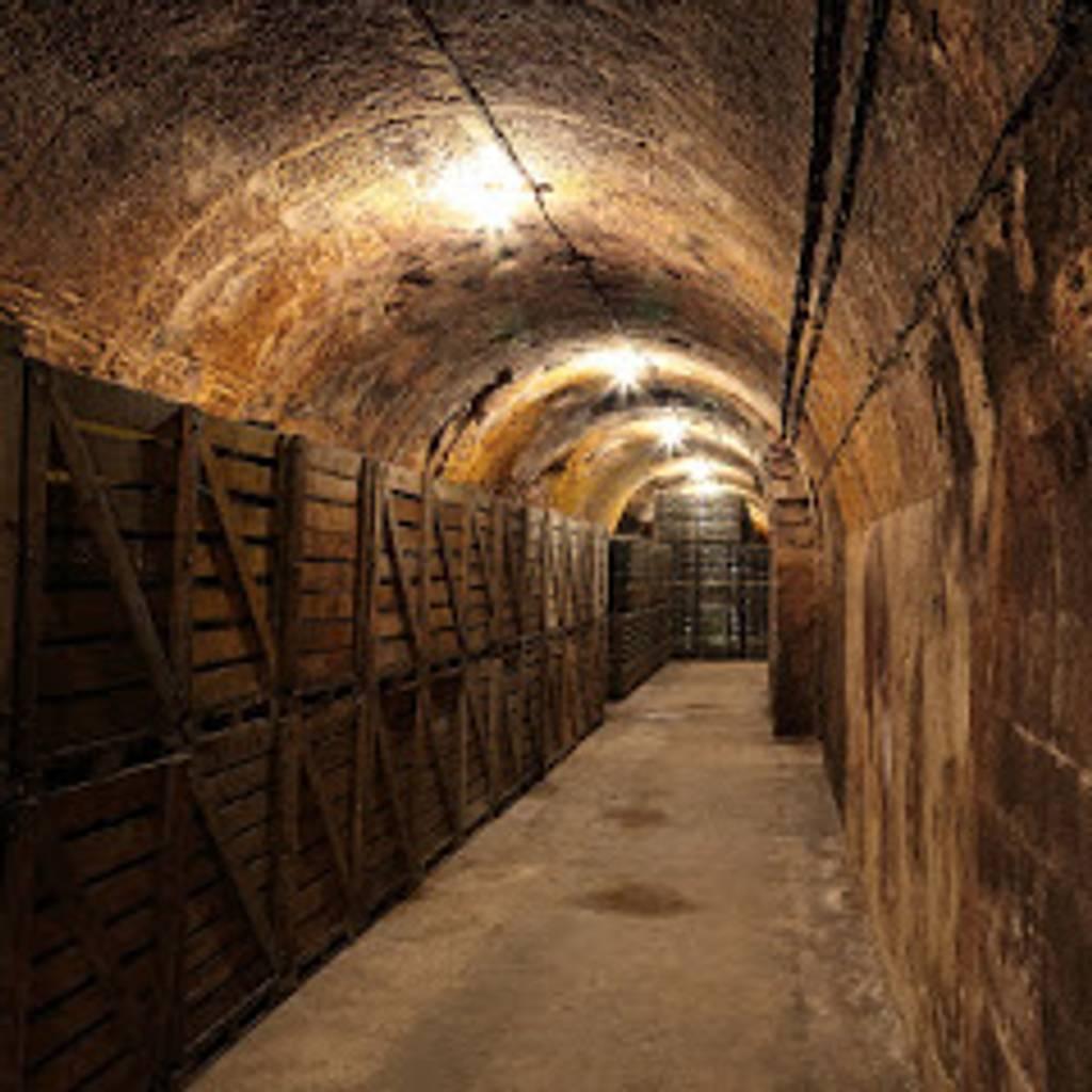 Cellar visit and tasting