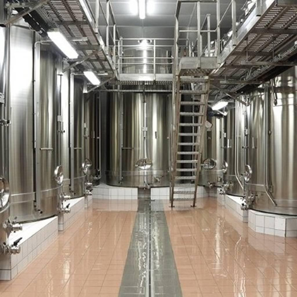 - Cellar visit and tasting