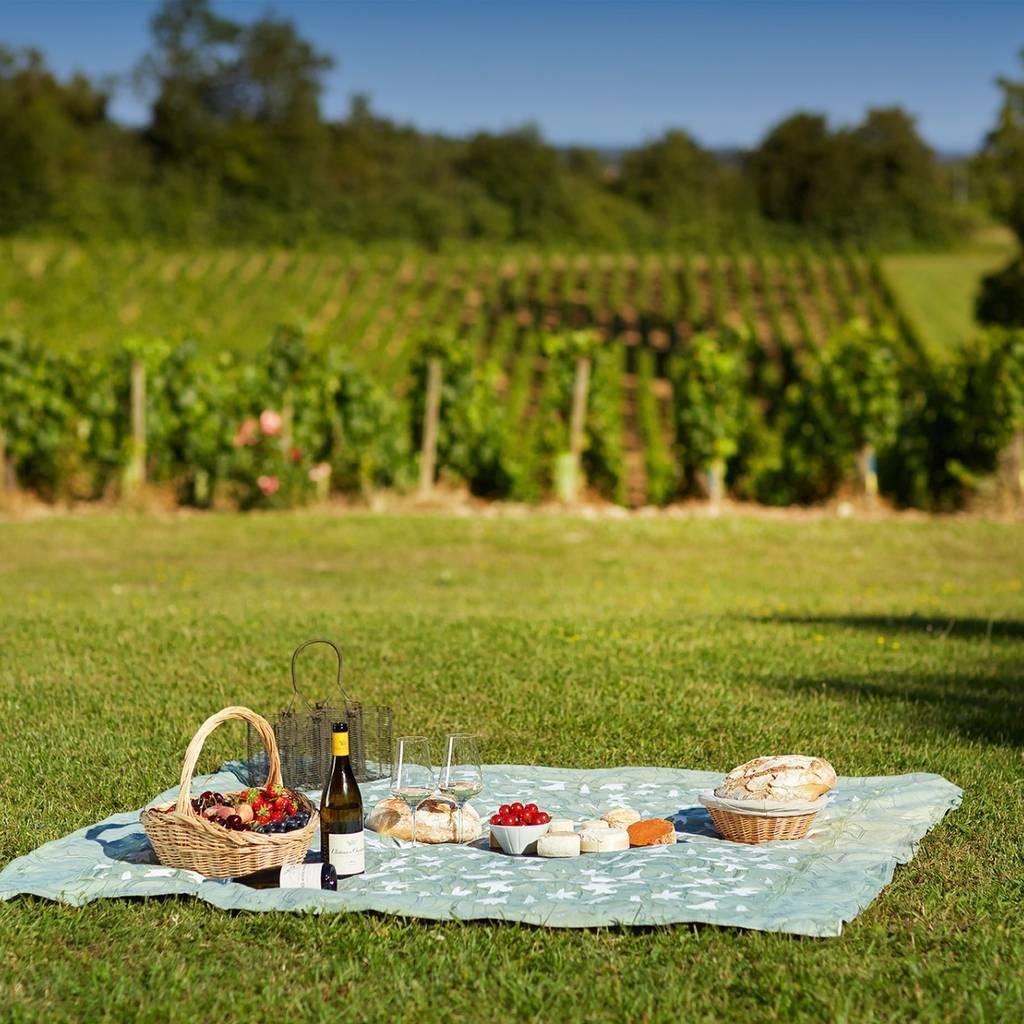 September 11 - Fantastic picnic