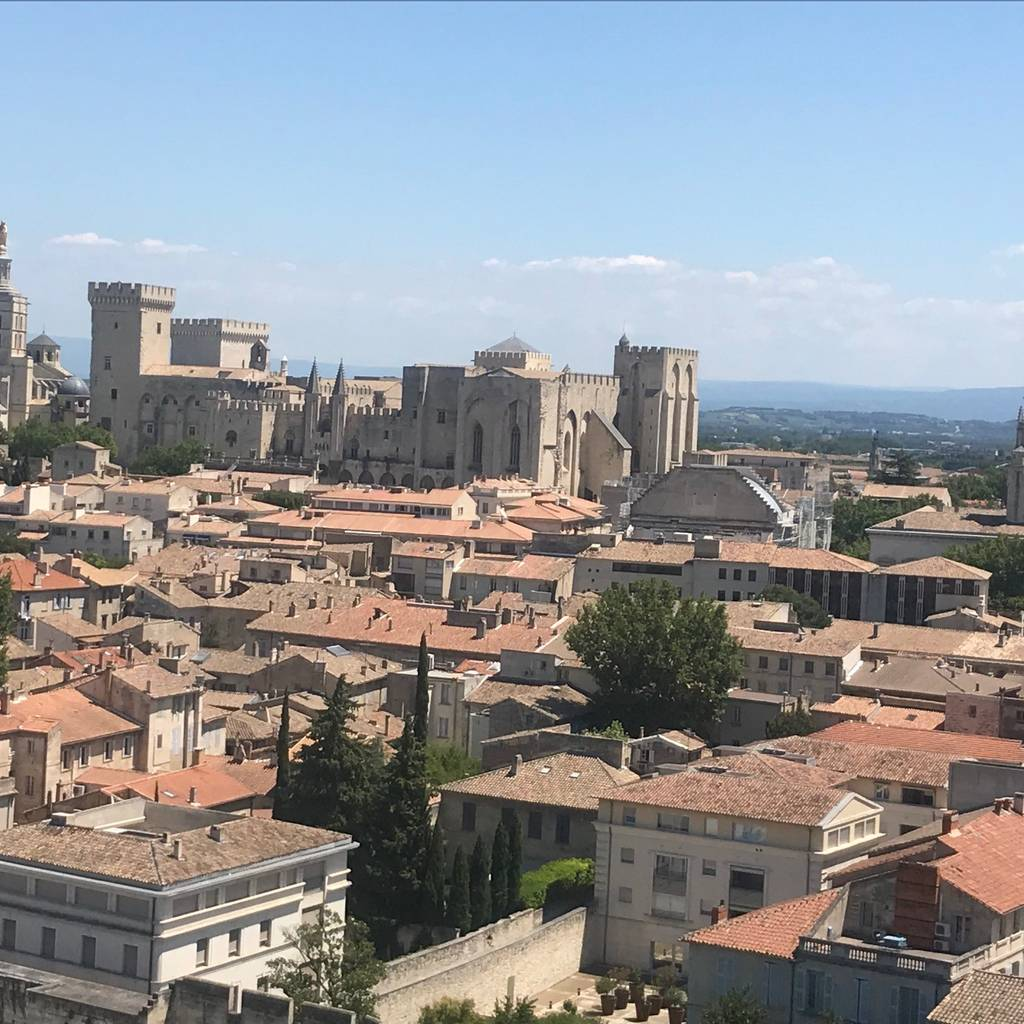 - Avignon and Pope's Palace walking tour