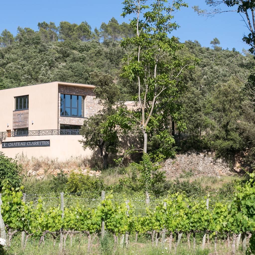 - Wine cellar visit