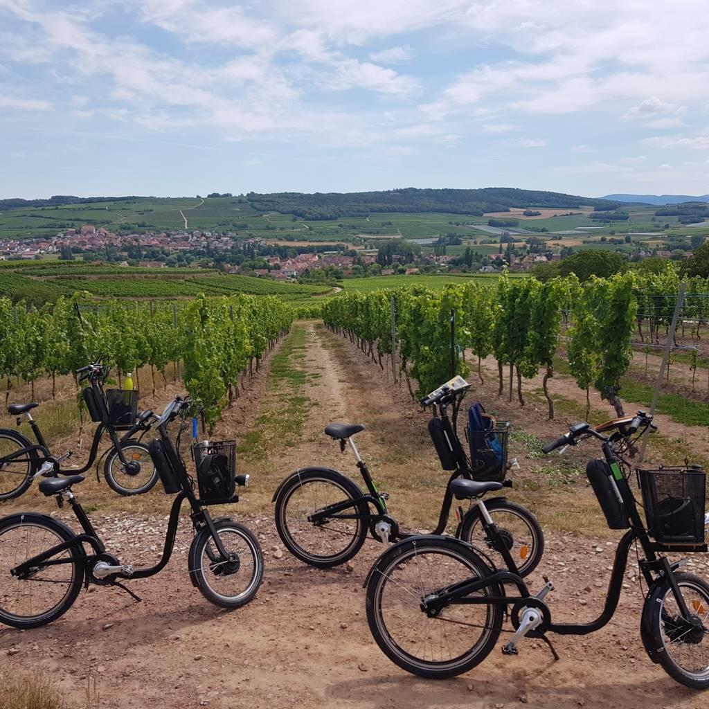 Passeio de bicicleta elétrica na vinha da Alsácia