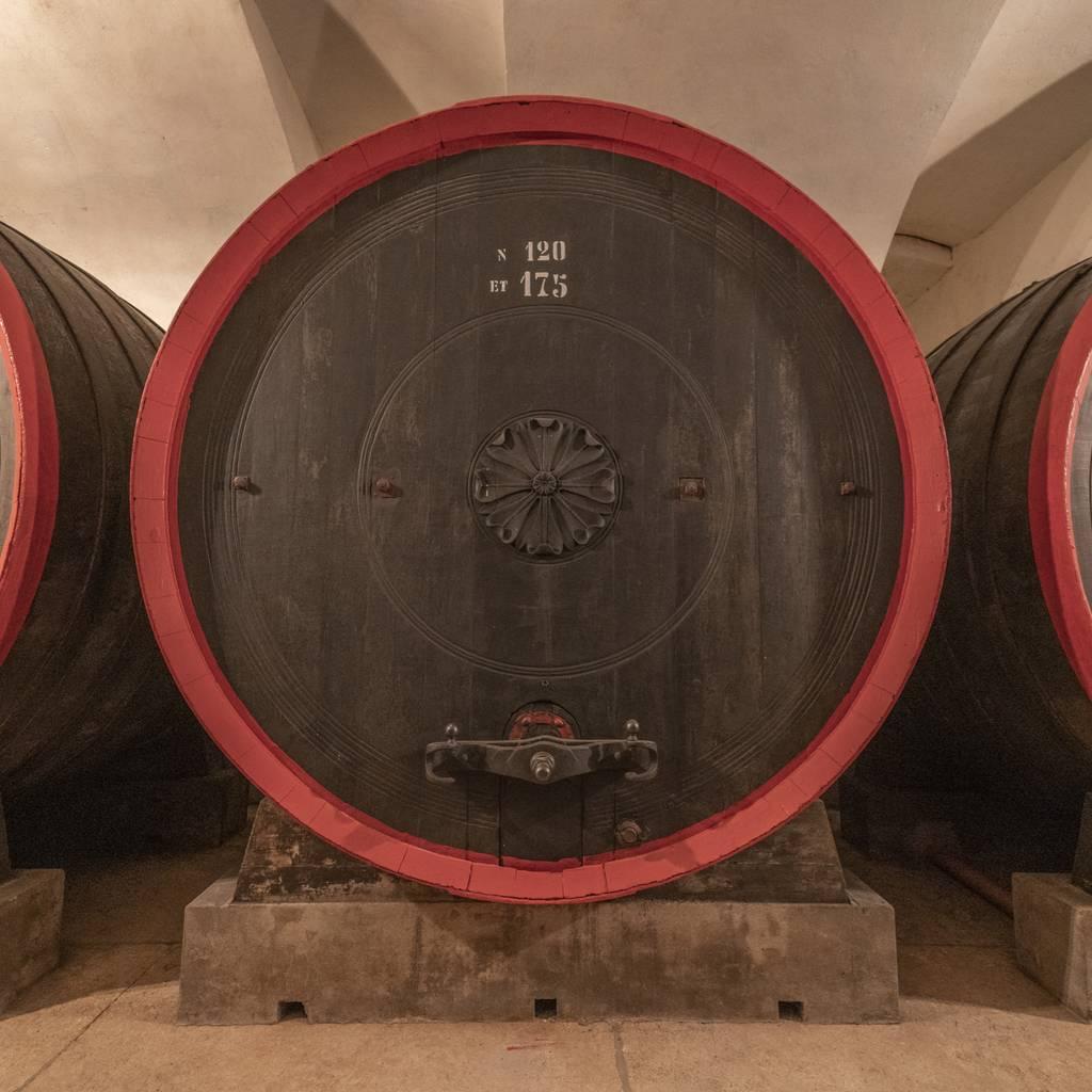 - Wine tasting and tour in Valpolicella