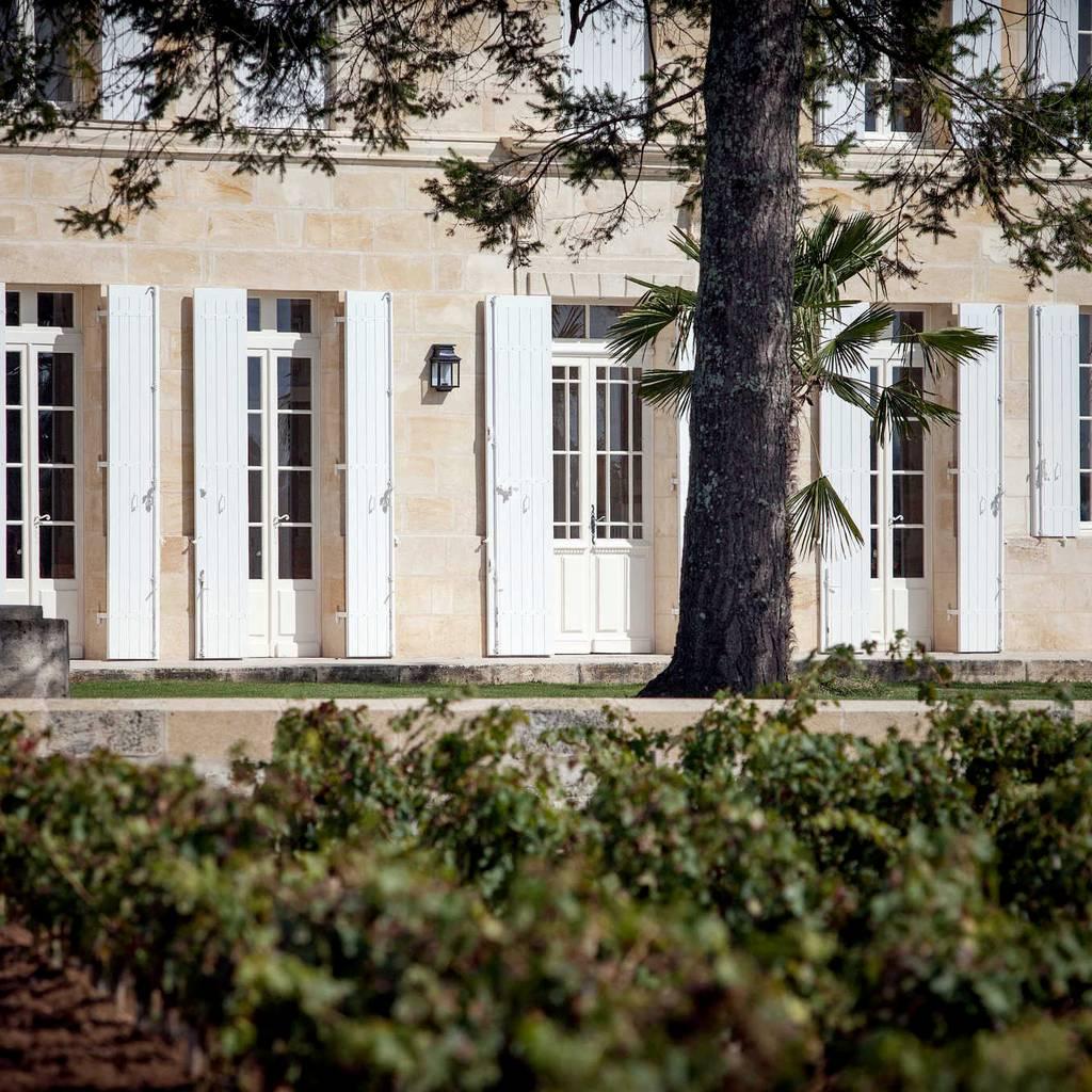 - De la vigne au verre en passant par les chais