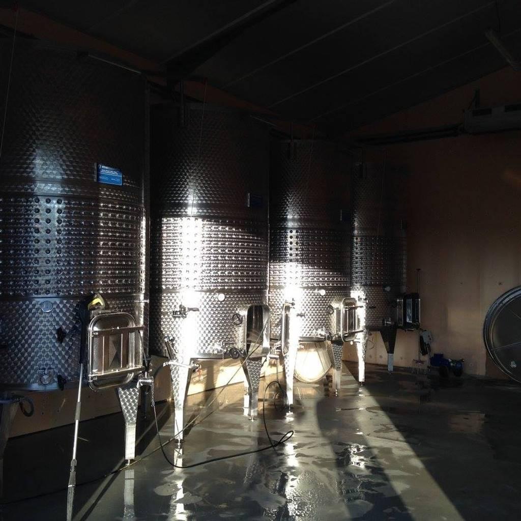 Découverte de la vinification et dégustation de nos cuvées