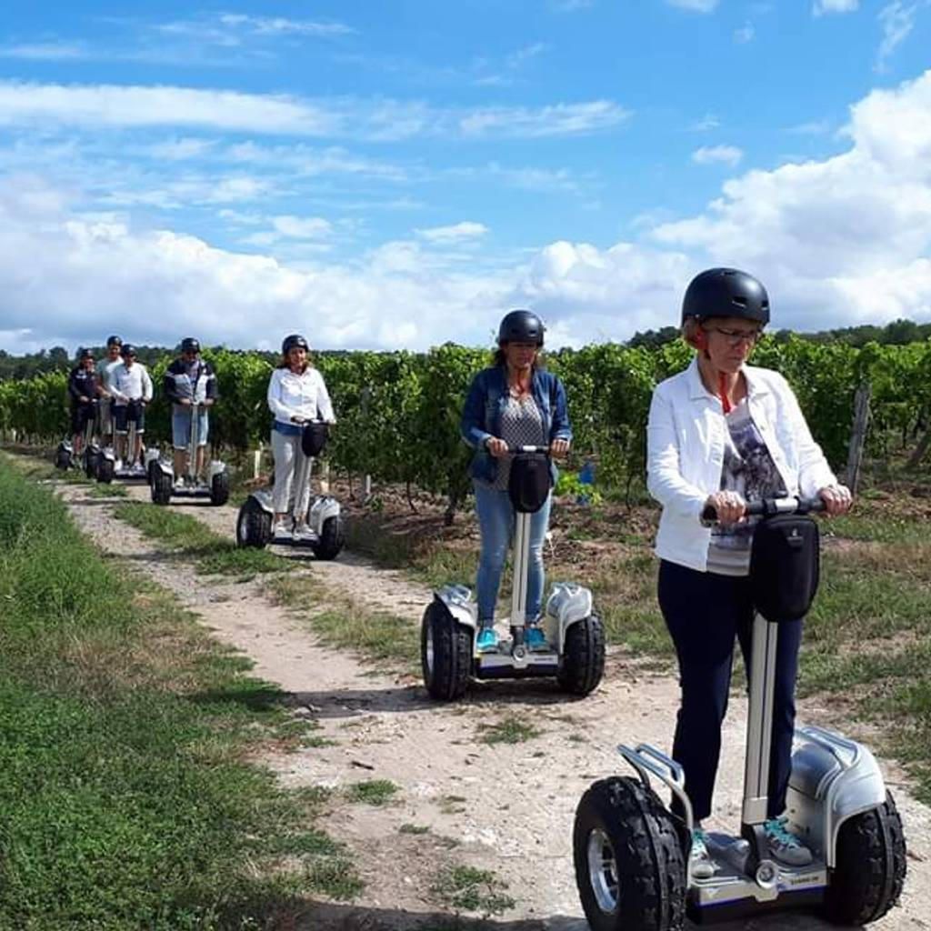 - Special jaunt in the vineyards & Tasting