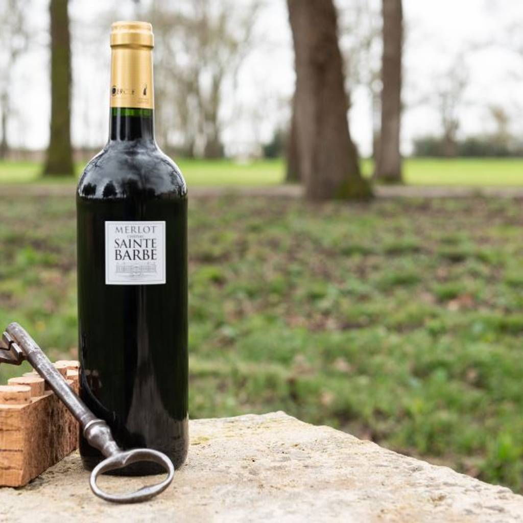 - Visit and tasting near Bordeaux