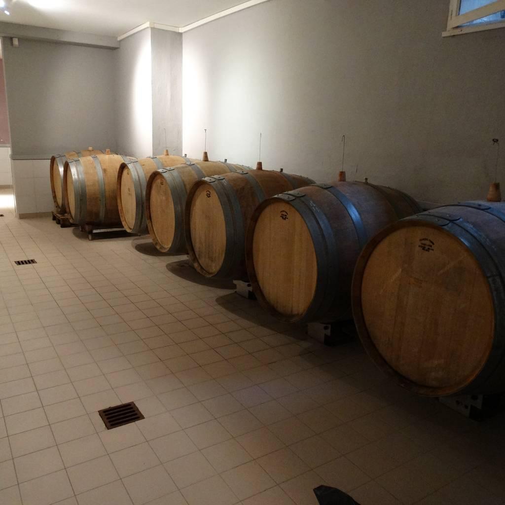 - Wine tour
