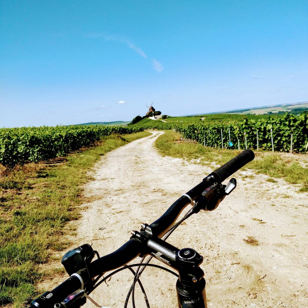 Bike tour in Champagne : full day : bike and van experience !