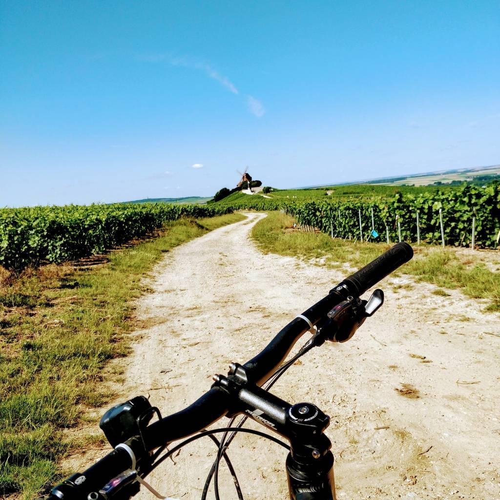 Balade à vélo en Champagne : Journée complète entre vélo et mini-van !