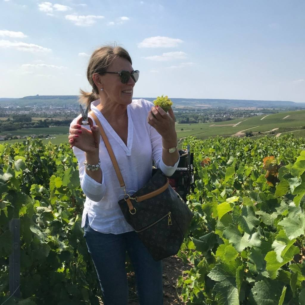 Unforgettable day in Champagne during harvest