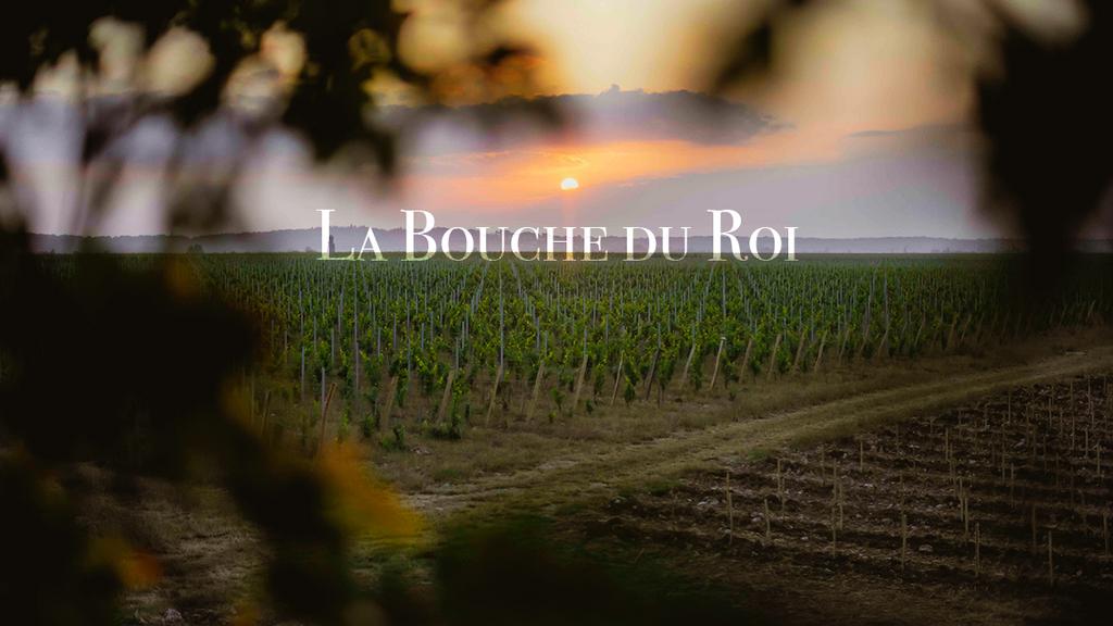 Le Domaine La Bouche Du Roi