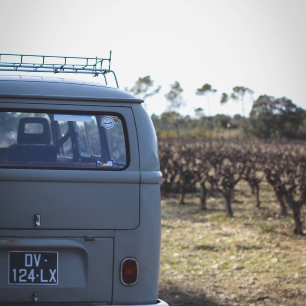 - Vintage Montpellier Winetour
