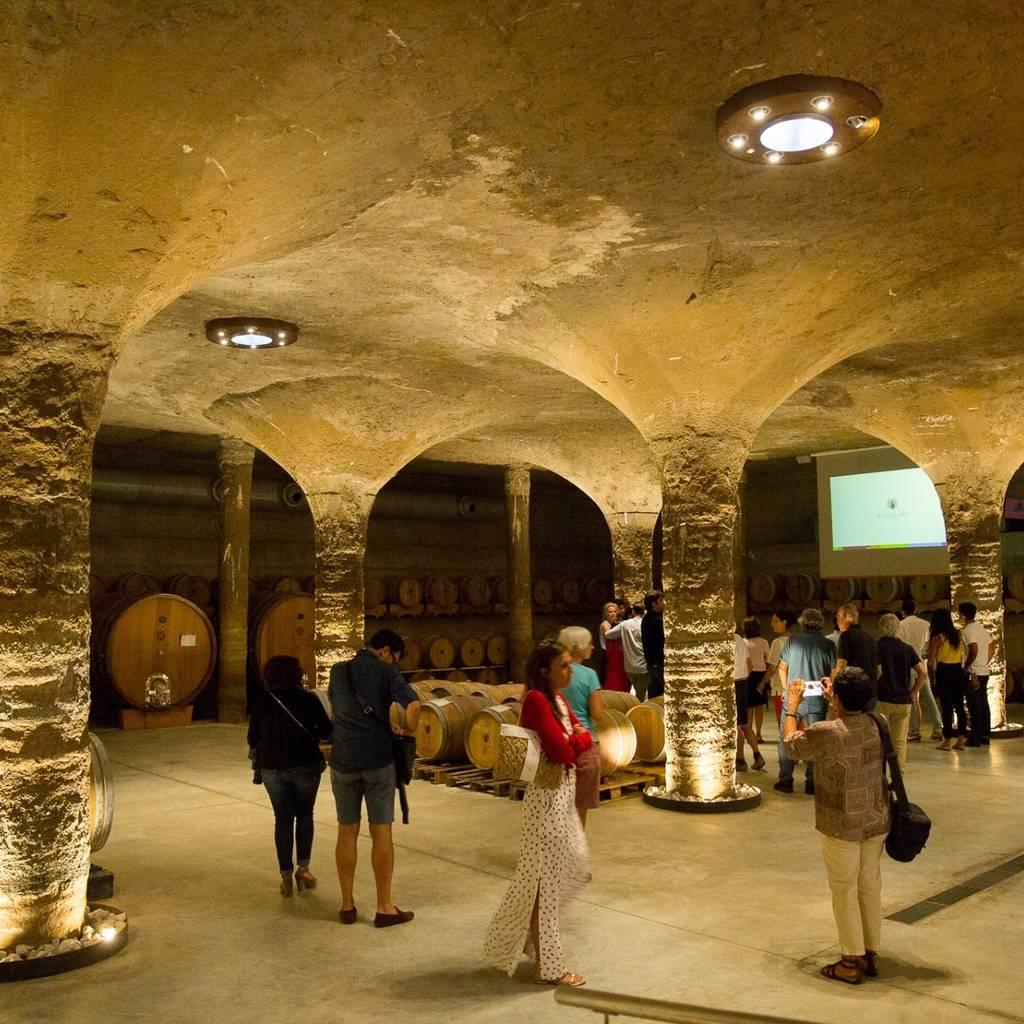 Castellaro-ervaring: bezoeken en proeven