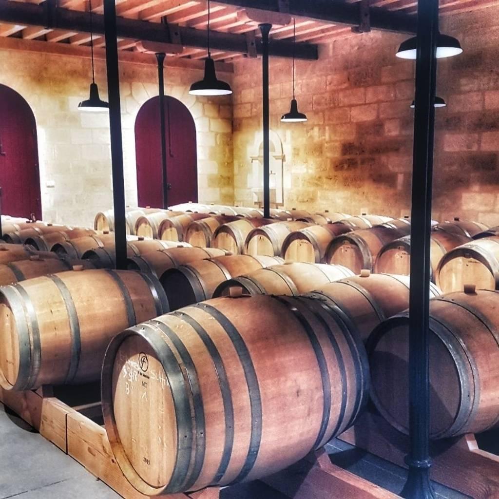 - Visit and tasting - Saint Emilion
