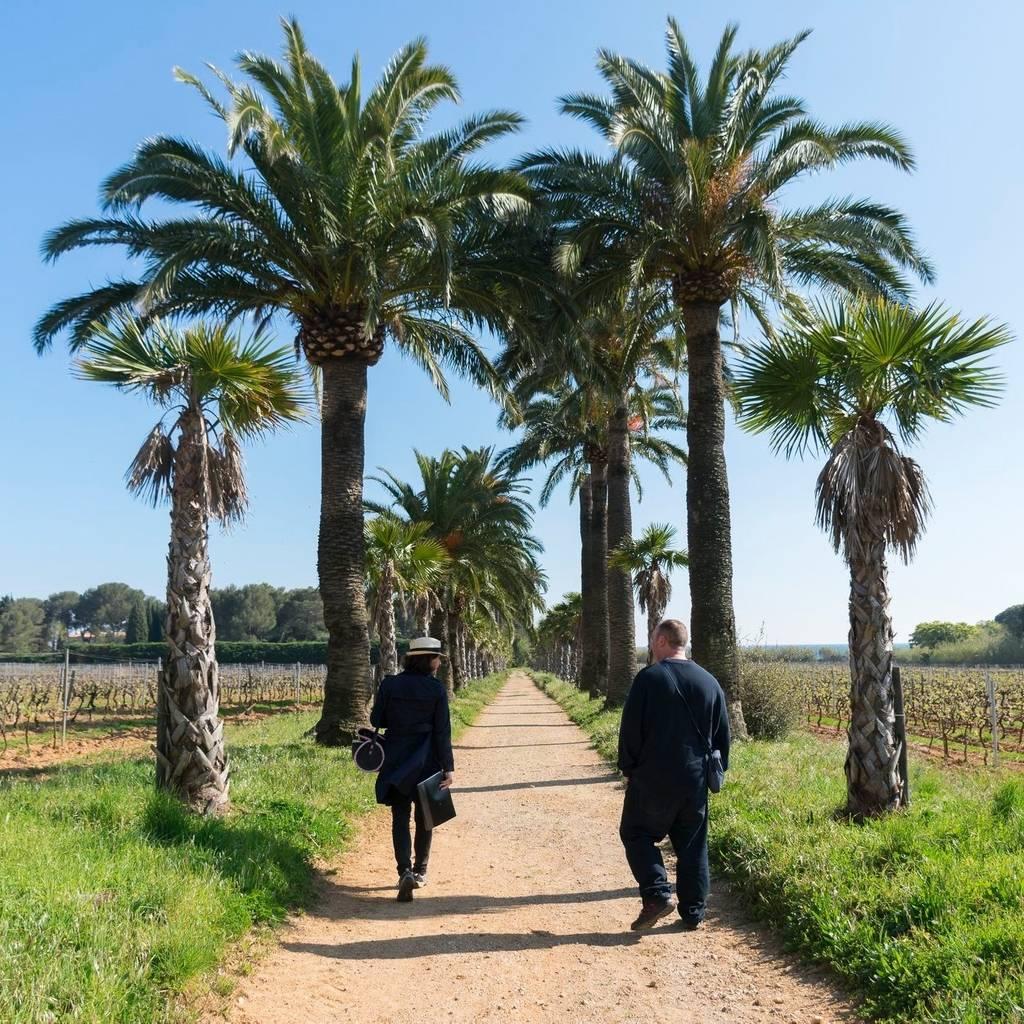 Walk between sea and vine