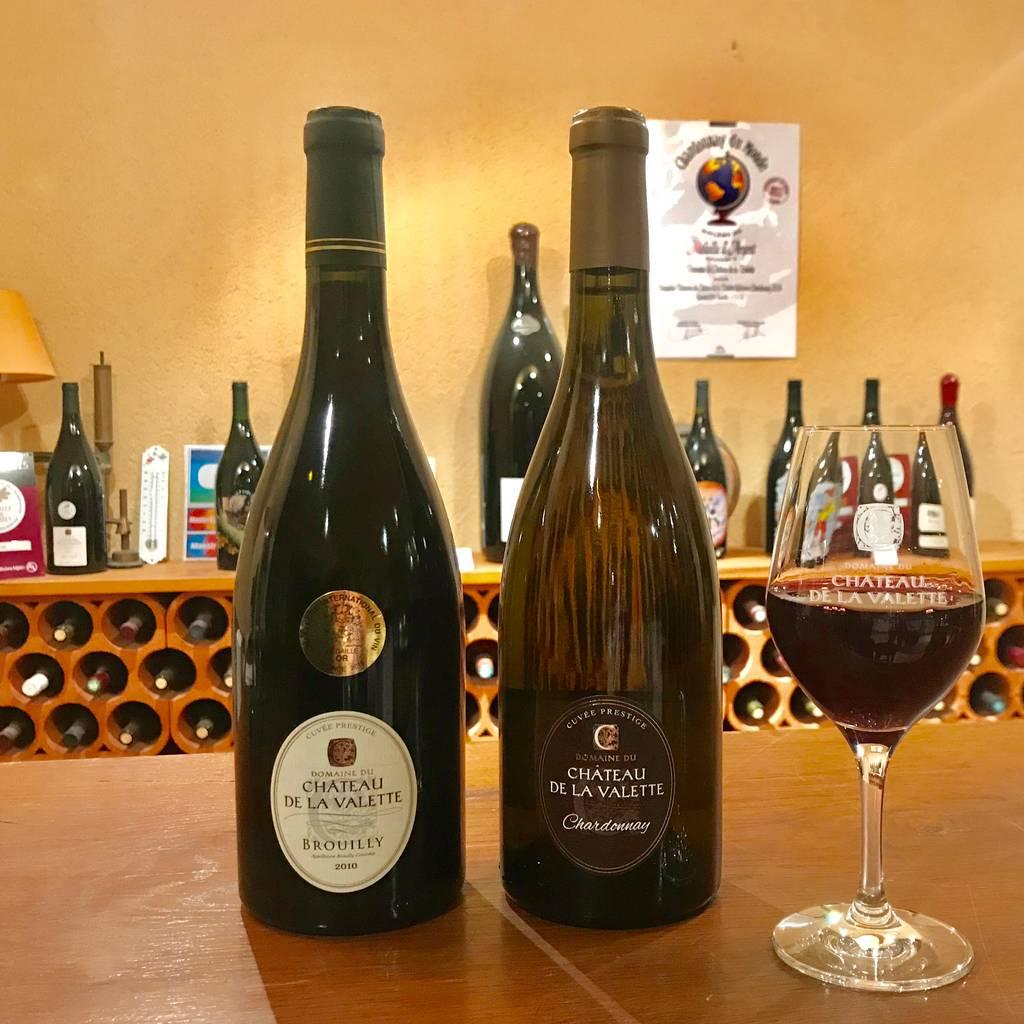 - Dégustation des vins du Domaine