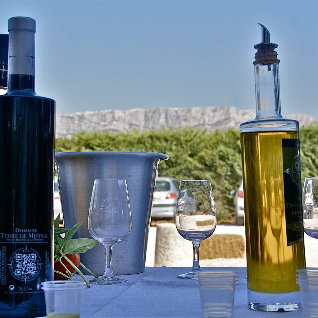 Führung durch unseren Weinkeller und die Olivenölmühle, gefolgt von einer Verkostung