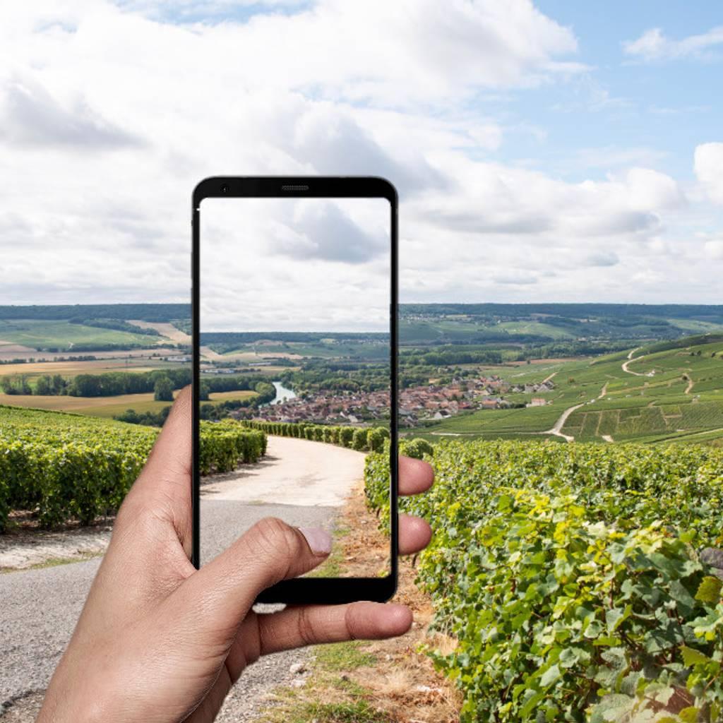 - Tour virtuel secrets du Champagne par un expert local