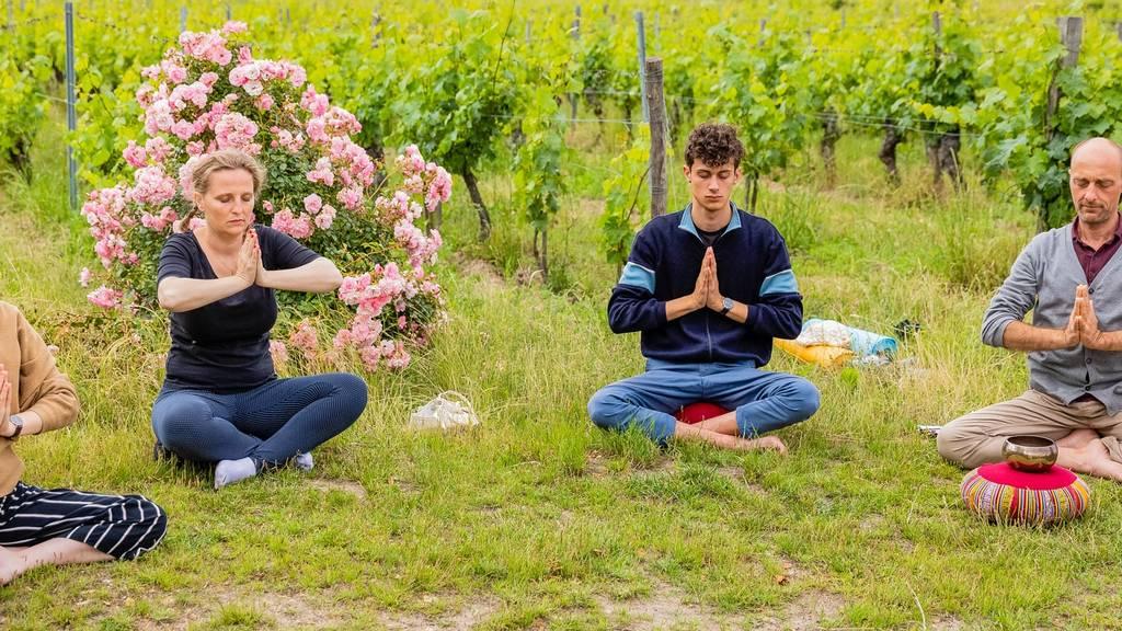 "Workshop"" Listen and Taste"" - Yoga and Biodynamics"