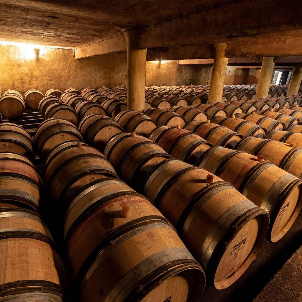- Visit and tasting at Mas de Daumas Gassac