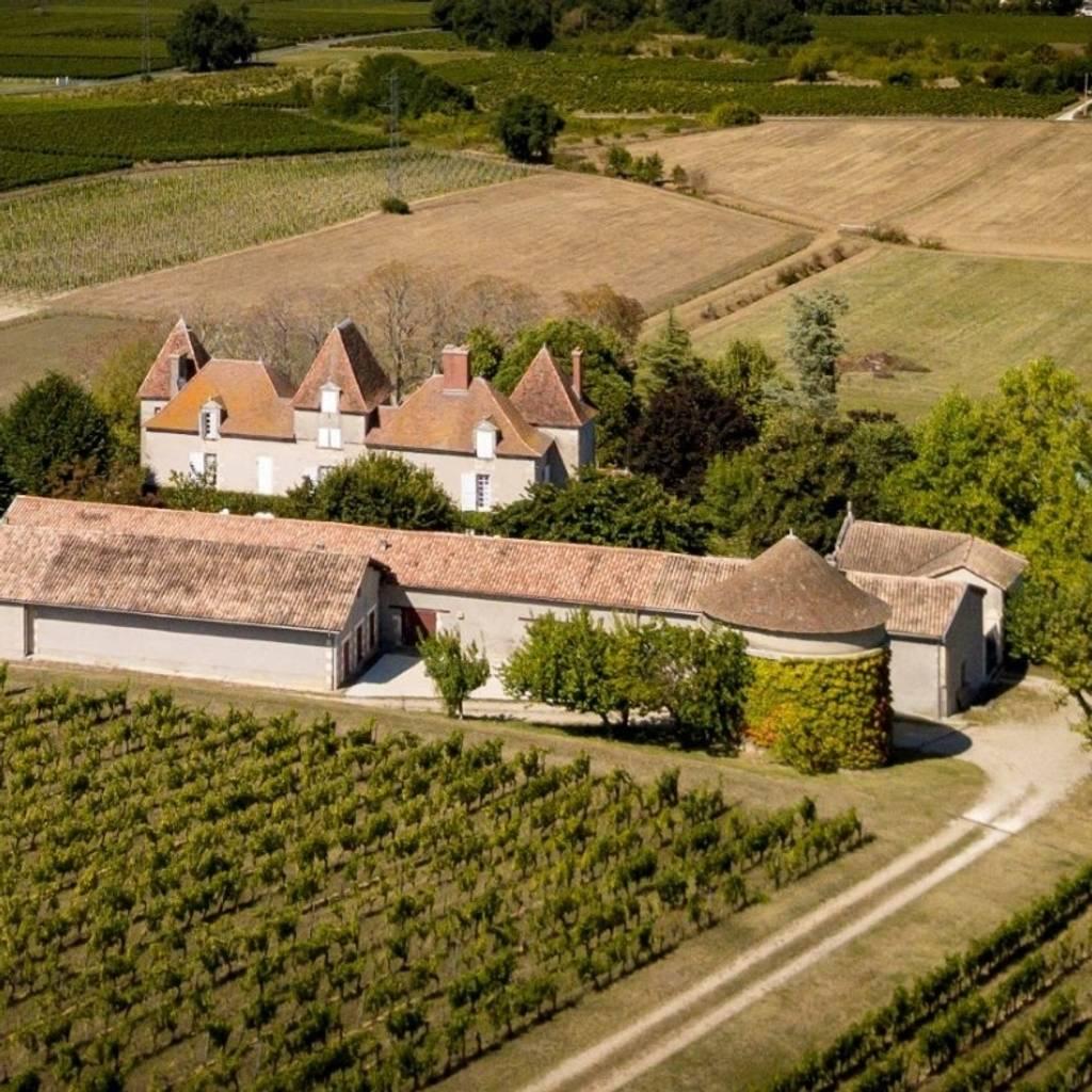 A Wineyard through History