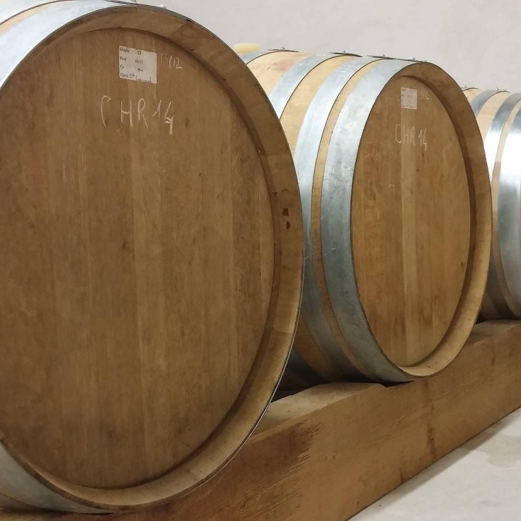 - Playful wine tasting and wine cellar visit