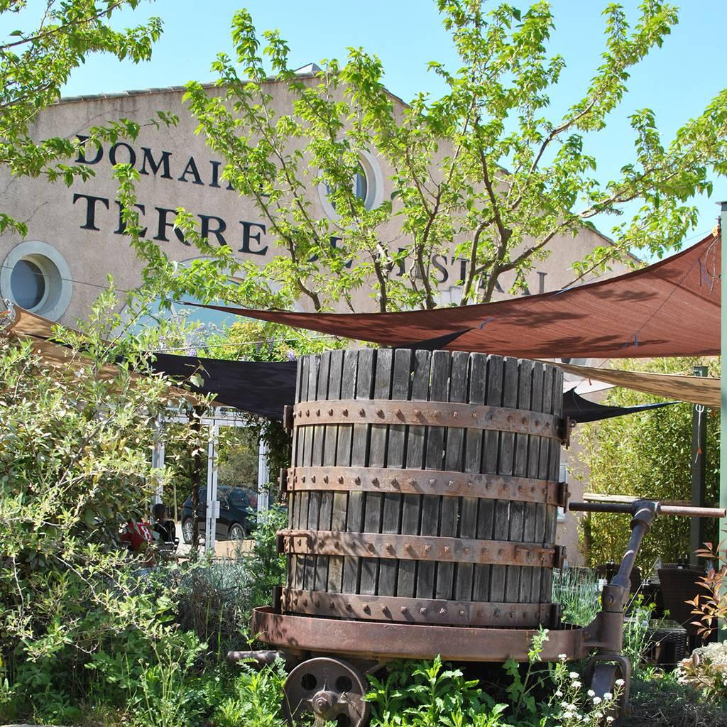 - Führung durch unseren Weinkeller und die Olivenölmühle, gefolgt von einer Verkostung