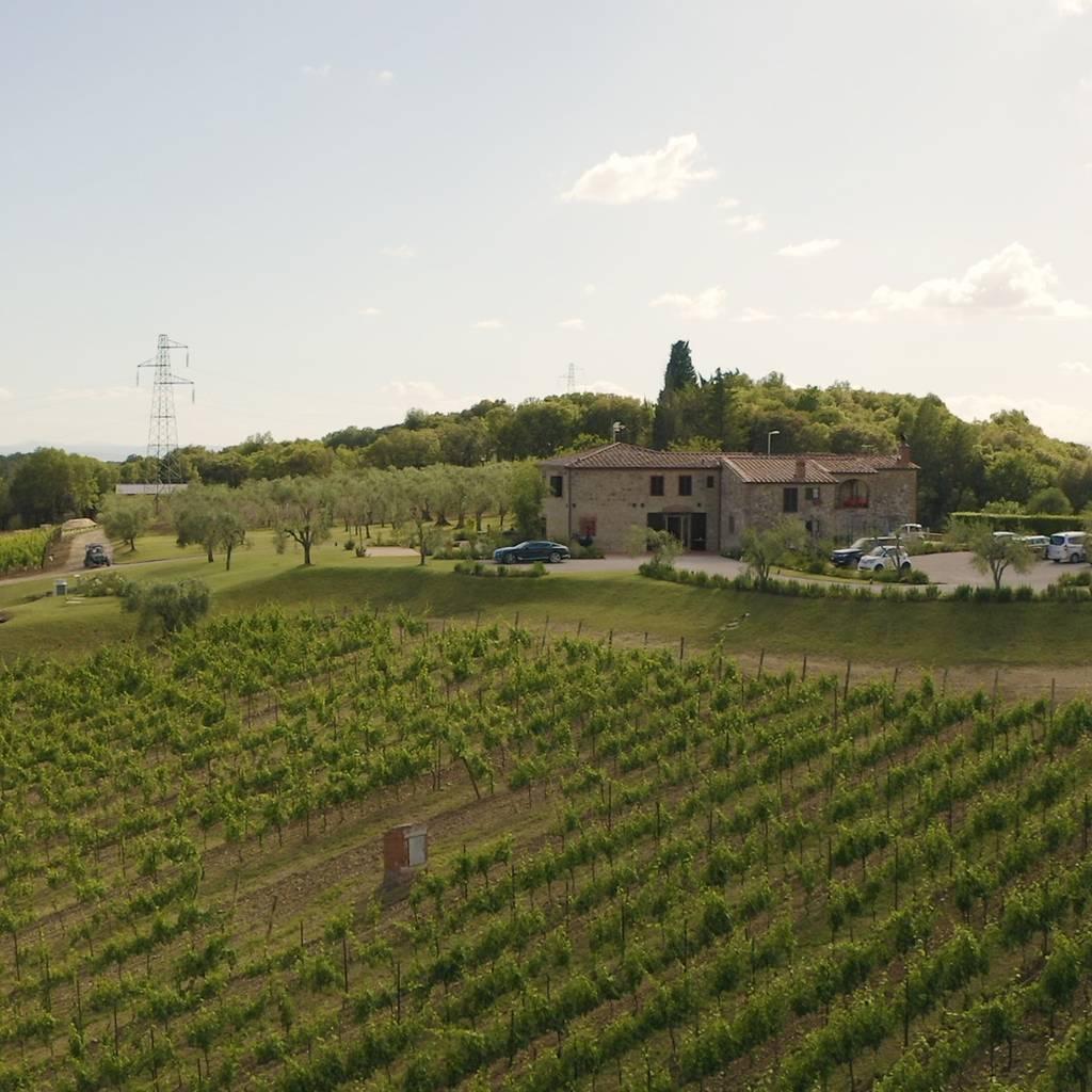 - Wine tasting discovering Boschetto Campacci