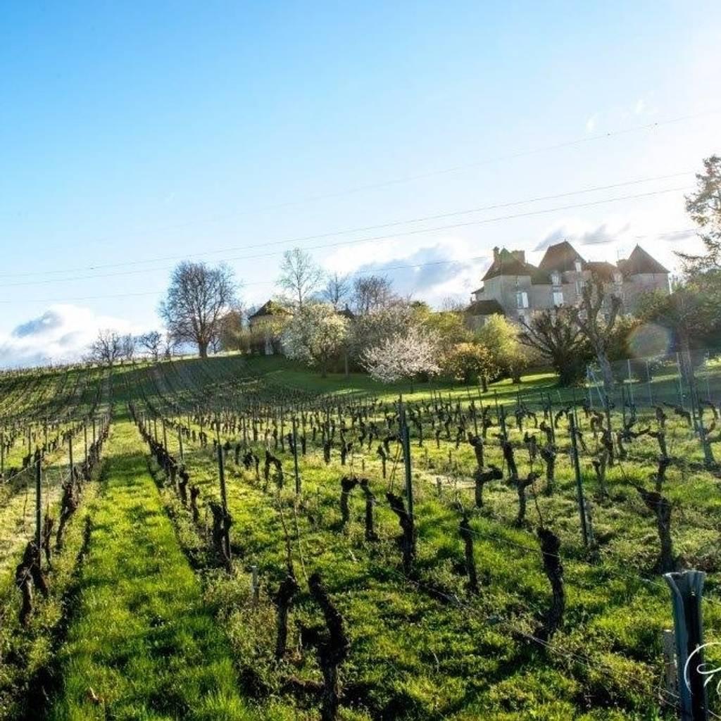 Brunch of the Winemaker