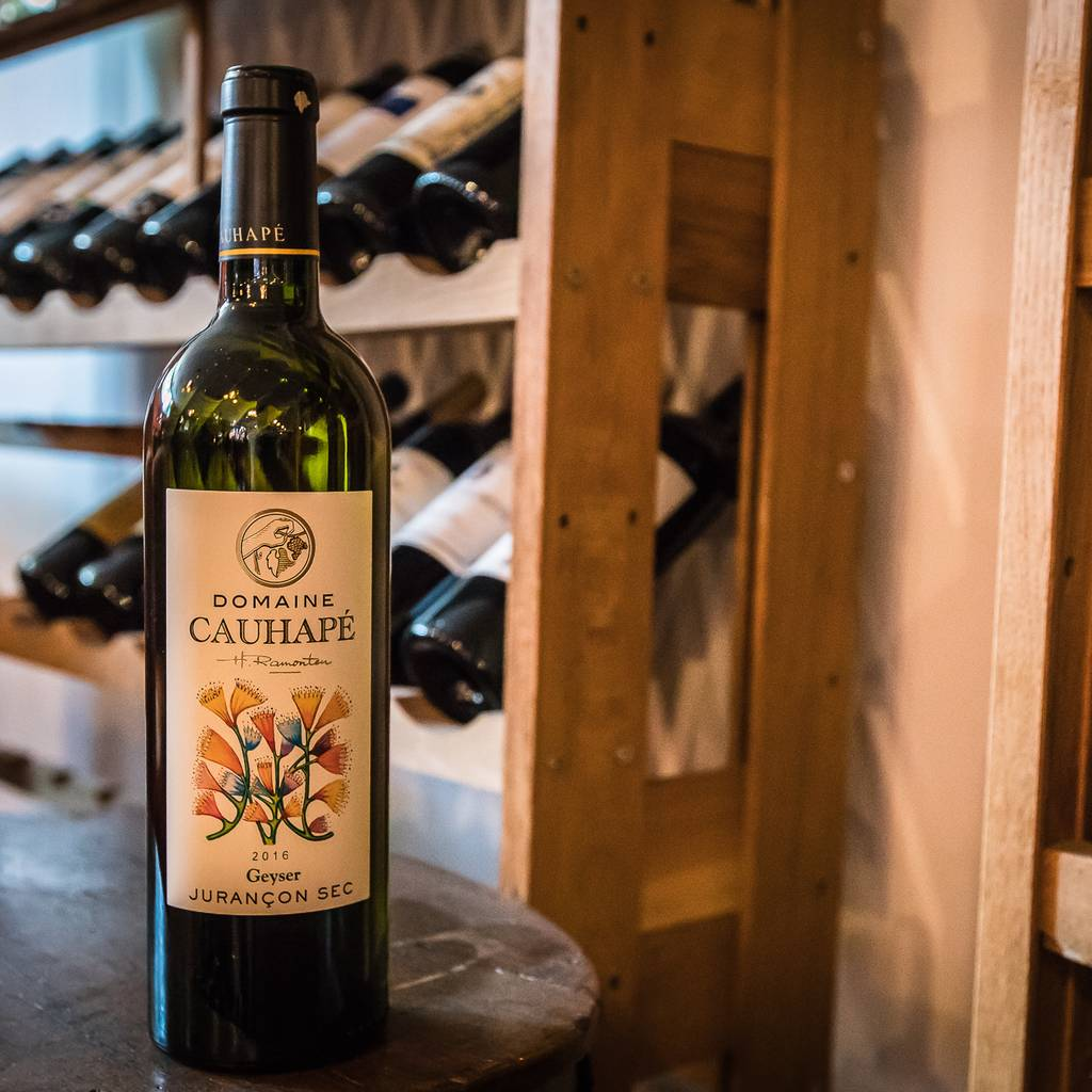 - Tasting: Discovery of the estate's wines