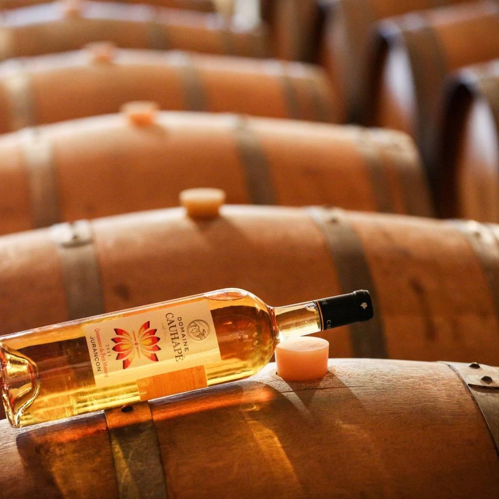 Cata: Descubrimiento de los vinos de la finca