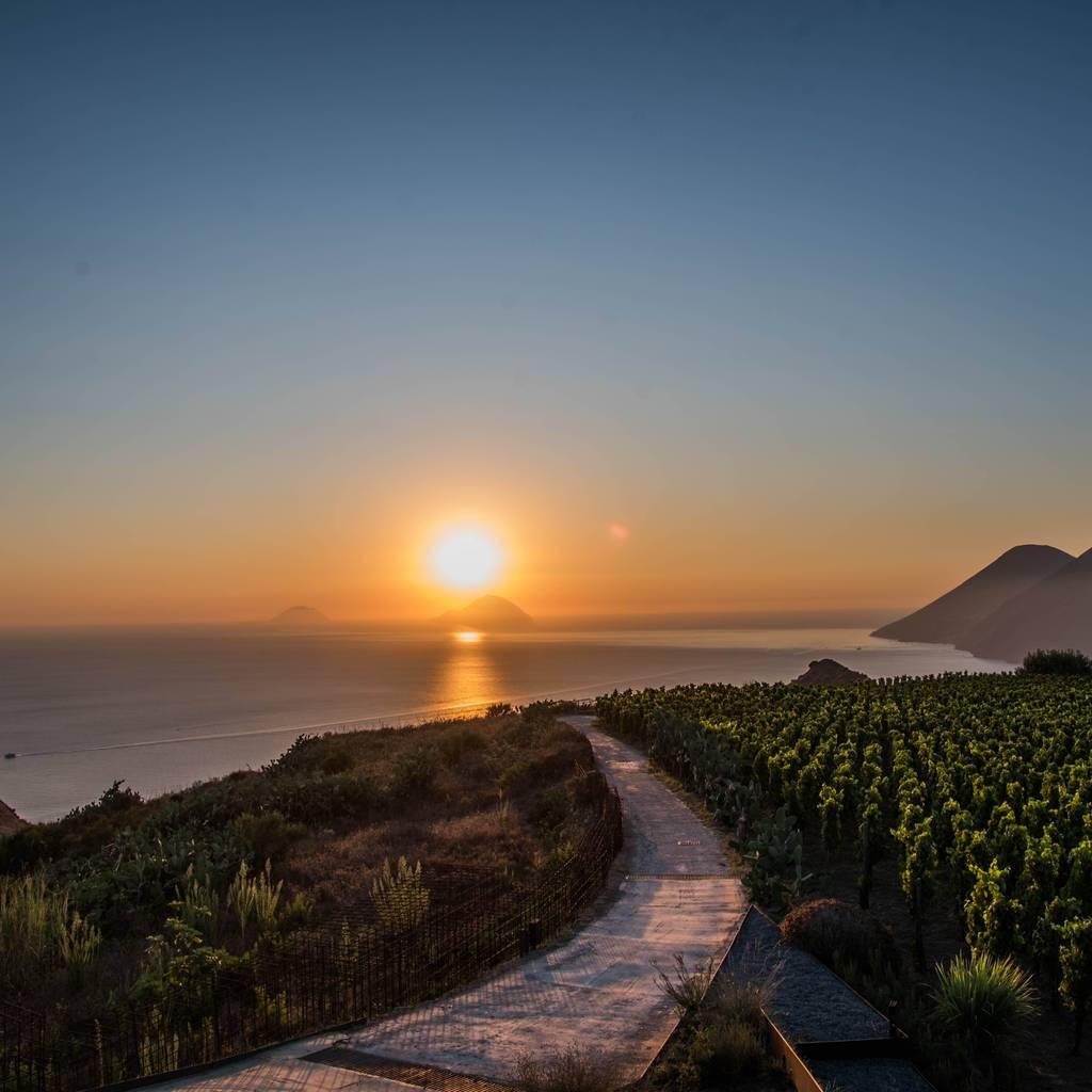 - Wine & Caolino: canasta de picnic