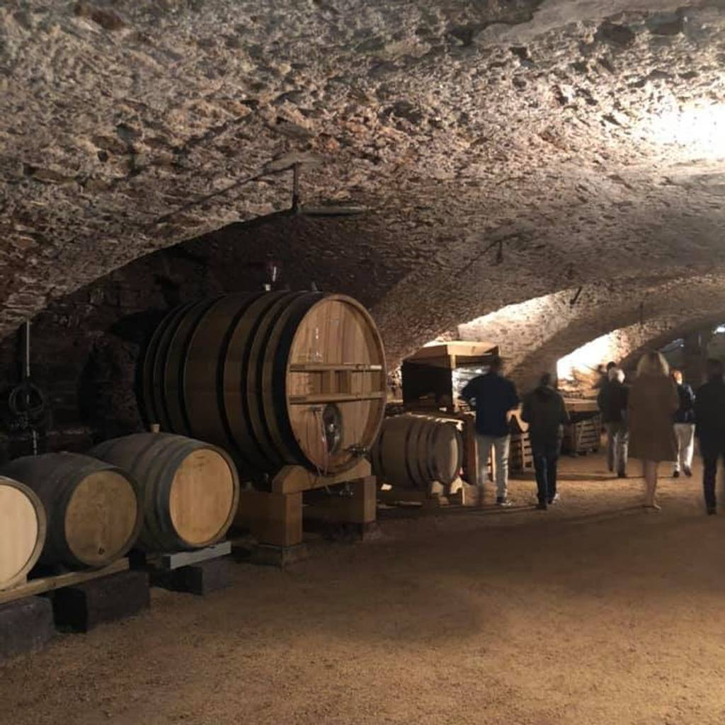 - Private tour at the Château de Champ-Renard & Wine tasting