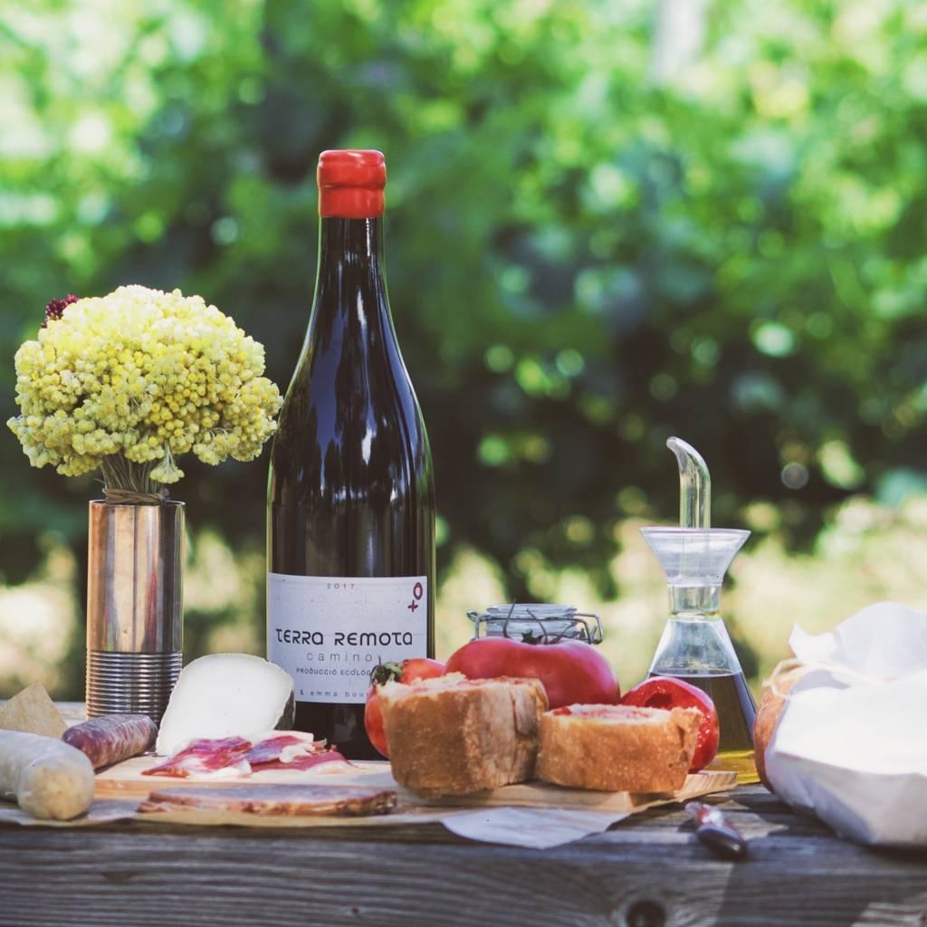Picnic in the vineyard