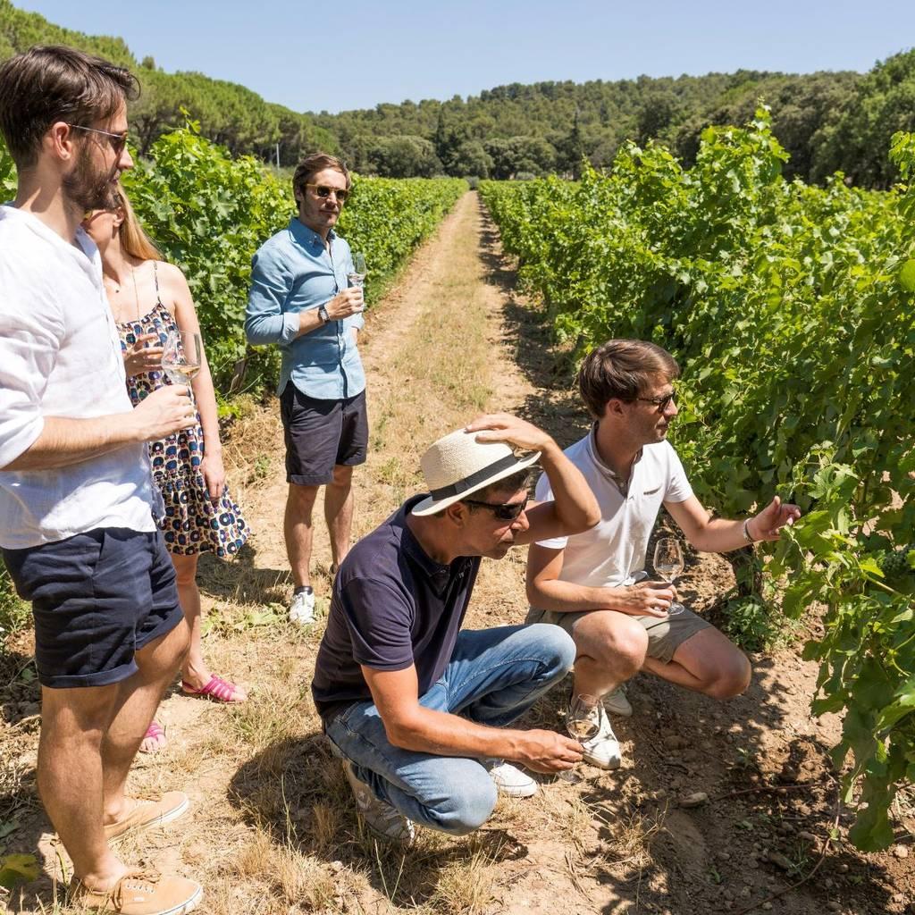 - Wine tour Tavel & Châteauneuf-du-Pape