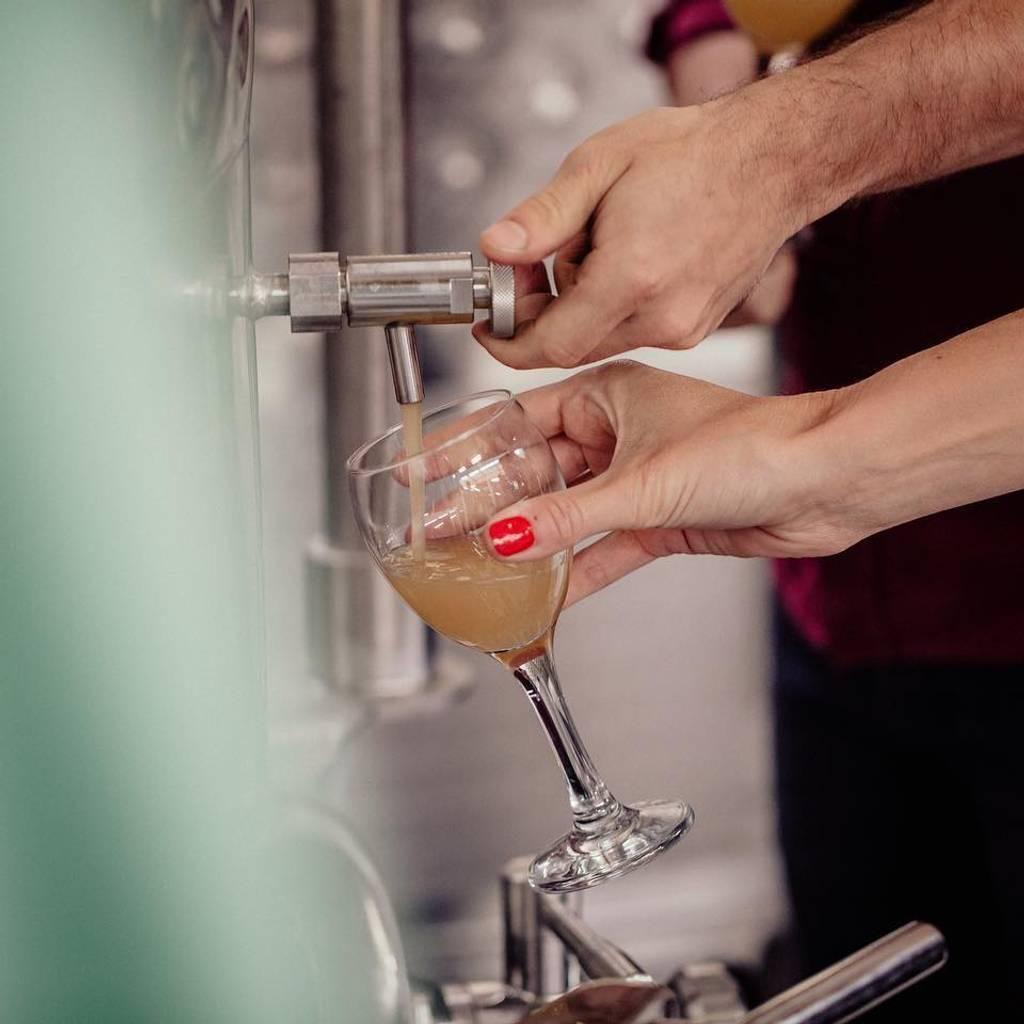 - Blandningsverkstad: skapa ditt röda vin