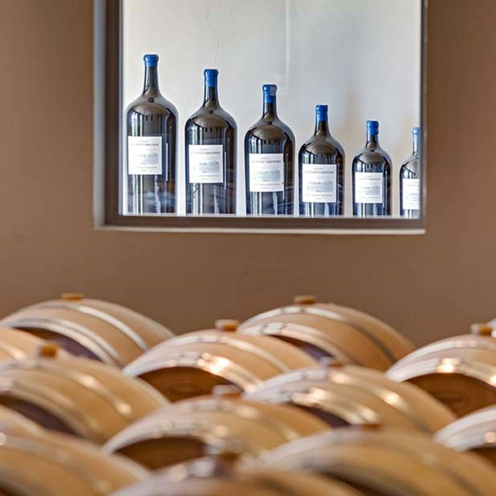 - Visit and tasting of 3 cuvees