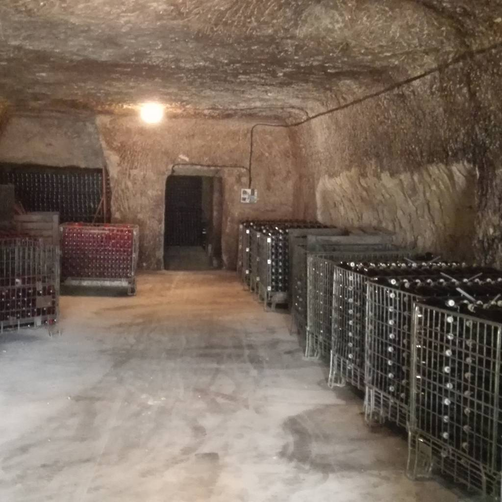Discovery of our troglodyte cellars