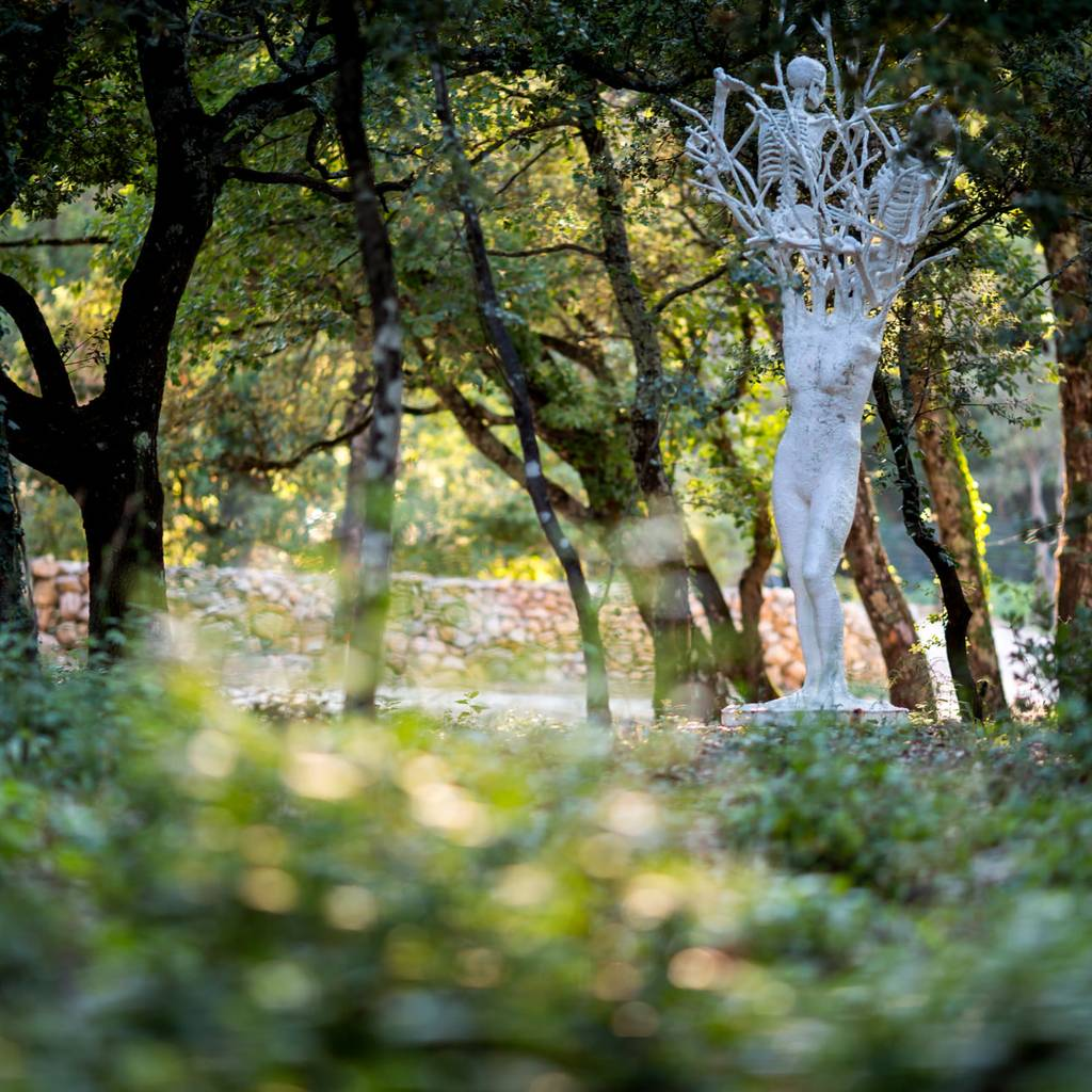 - Free visit to the sculpture park on foot