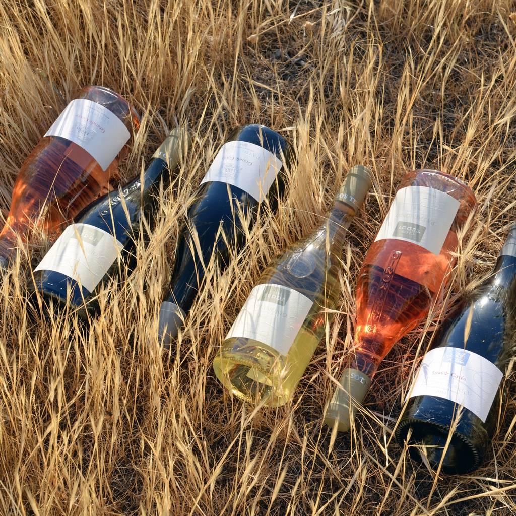 - Du vin, un spuntinu... Dégustation au coeur du désert de l'Agriate