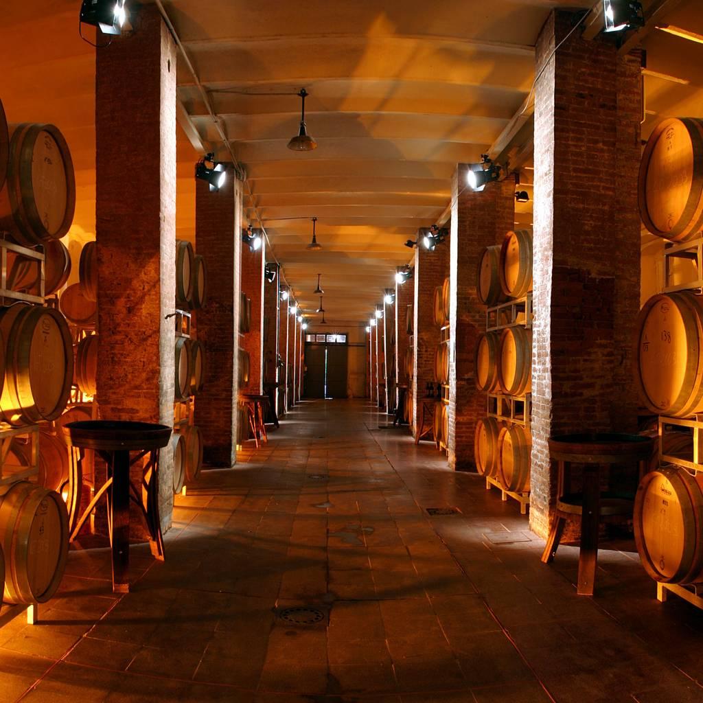 - Wine & Food Experience