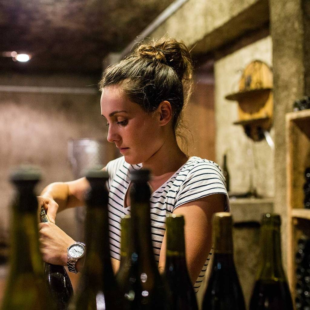 Enter to the cellar family for a wine tasting