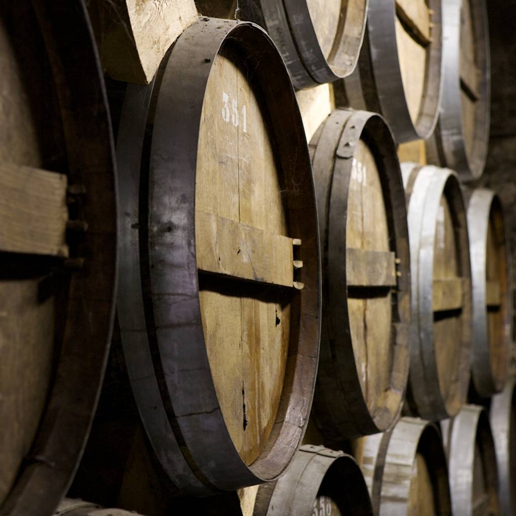 - Workshop in the footsteps of Dom Pérignon from vine to glass