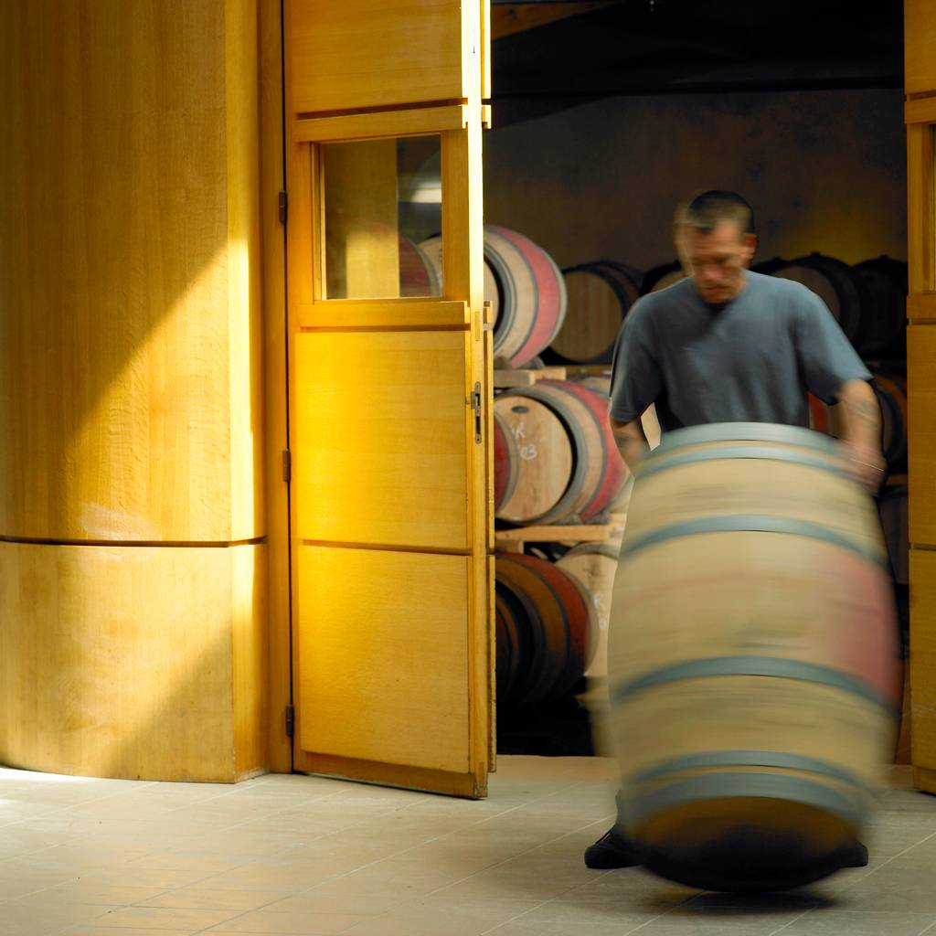 - Discover the vineyard and cellars