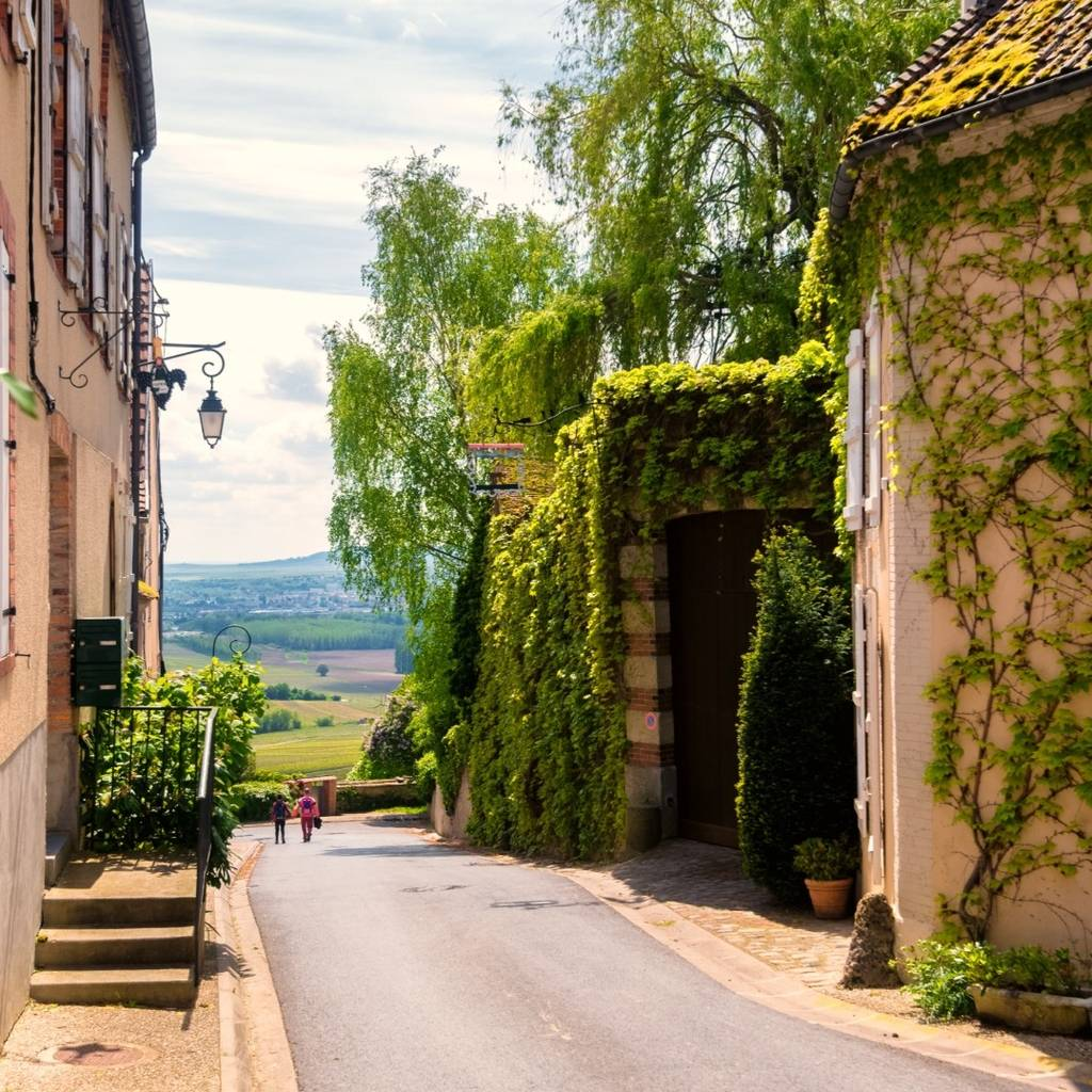 - The must-sees of Champagne