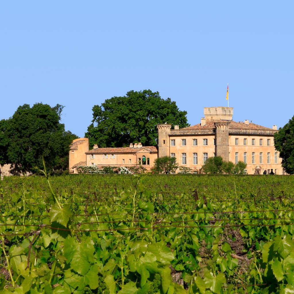 - Wine Safari Biodiversity Tour