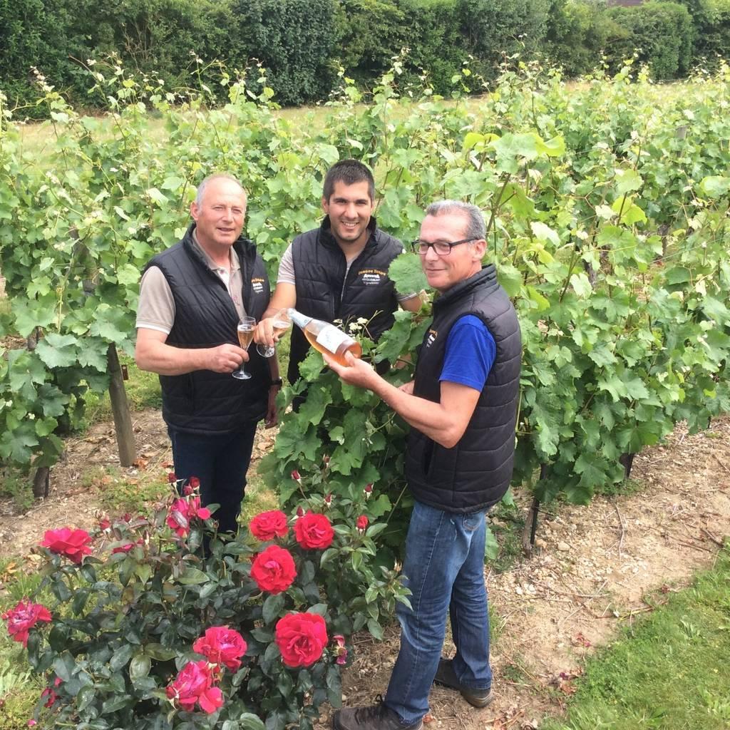 Découverte du vignoble de l'Anjou secteur Aubance-Brissac